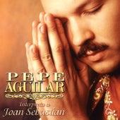 Pepe Aguilar Interpreta A Joan Sebastian de Pepe Aguilar