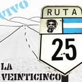 Ruta 25 de La 25