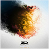 Beautiful Now von Zedd