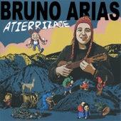 Atierrizaje de Bruno Arias
