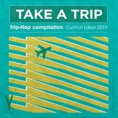 Take a Trip de Various Artists