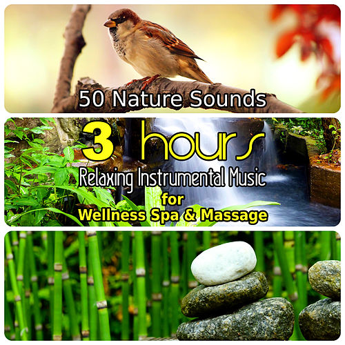 50 Nature Sounds: 3 Hours Relaxing Music for Welness Spa and Massage, Background Instrumental Songs with Singing Birds, Waterfall, Bubbling Brooks & Natural Forest Ambience von Dominika Jurczuk Gondek