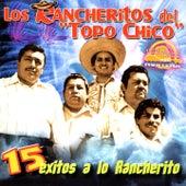 15 Éxitos a Lo Rancherito by Los Rancheritos Del Topo Chico