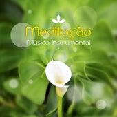 Meditação - Música Instrumental – Harmonia, Música de Flauta, Piano, Guitarra, Sons da Natureza, Musica Reiki, Zen, Yoga, Espiritualidade de Meditação e Espiritualidade Musica Academia