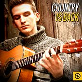 Country Is Back, Vol. 2 by Various Artists