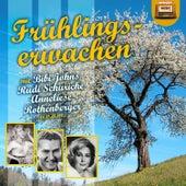 Frühlingserwachen de Various Artists
