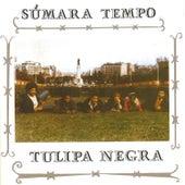 Súmara Tempo by Tulipa Negra