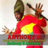The Best of Shashamane Reggae Dubplates (Anthony B Anthems) by Anthony B