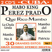 The Mambo King de Various Artists