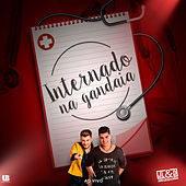 Internado na Gandaia (Ao Vivo) von João Lucas & Diogo
