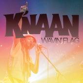 Wavin' Flag (Orange Monkey Version) by K'naan