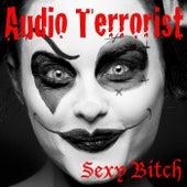 Sexy Bitch de Audio Terrorist