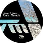 Cala Salada by Harvey