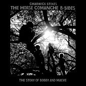 The Horse Comanche B Sides (The Story of Bobby and Maeve) by Chadwick Stokes