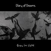Grau im Licht de Diary Of Dreams