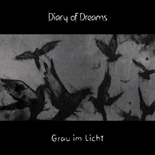 Grau im Licht by Diary Of Dreams