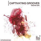 Captivating Grooves, Vol. 1 von Various Artists