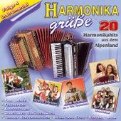 Harmonikagrüße Folge 4 von Various Artists