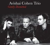 Gently Disturbed von Avishai Cohen
