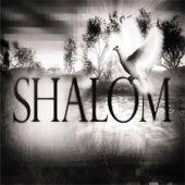 Shalom - Single by Shay