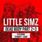 Dead Body Part 2+3 by Little Simz