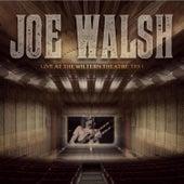 Live at the Wiltern Theatre, Los Angeles, California, 1991 - FM Radio Broadcast de Joe Walsh