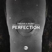 Perfection von Twoloud