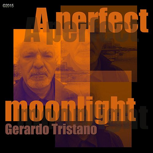 A Perfect Moonlight di Gerardo Tristano