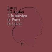 Entre 20 Aguas A La Música De Paco De Lucía von Various Artists
