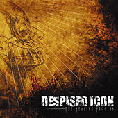 The Healing Process di Despised Icon