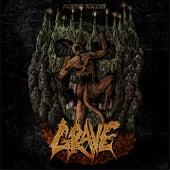 Morbid Ascent by Grave