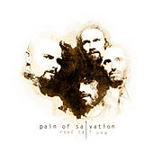 Road Salt One by Pain Of Salvation