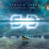 Brief Nocturnes And Dreamless Sleep de Spock's Beard