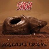 10,000 Days de Saga