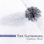 Nighttime Birds (Reissue) by The Gathering