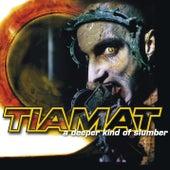 A Deeper Kind of Slumber (Reissue) by Tiamat