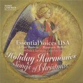 Holiday Harmonies: Songs of Christmas de Various Artists