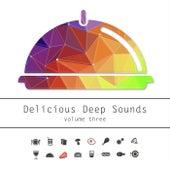 Delicious Deep Sounds, Vol. 3 von Various Artists