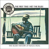 When the Sun Goes Down, Vol. 2: The First Time I Met the Blues by Various Artists