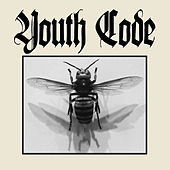 Anagnorisis de Youth Code