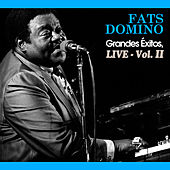 Grandes Éxitos, Live Vol. Ii by Fats Domino