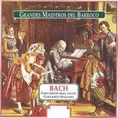 Grandes Maestros del Barroco: Bach by Various Artists