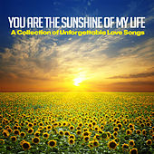 You Are the Sunshine of My Life (A Collection of Unforgettable Love Songs) von Various Artists
