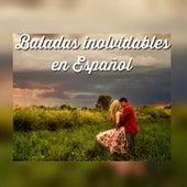 Baladas Inolvidables en Español by Various Artists