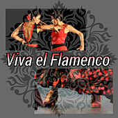 Viva el Flamenco! de Various Artists