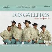 Como Confesarte by Los Gallitos