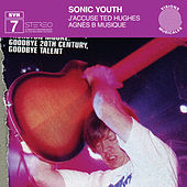 J' Accuse Ted Hughes by Sonic Youth