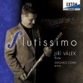 Flute Works de Masako Ezaki (Piano)