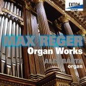 Reger: Organ Works by Ales Barta