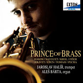 Prince of Brass by Ales Barta
